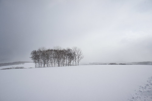 Hokkaido 2011 - ニセコ - White Isle Niseko (5)