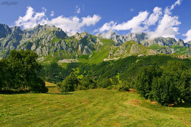 Cantabrian pastureland
