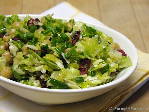 Raw Brussels Sprouts Salad with Pecorino Romano, Chives, and a Lemony Caper Dressing 1 - FarmgirlFare.com
