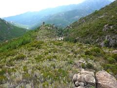 Plateau du Niffru : retour au plateau et vue sur le rocher caractéristique