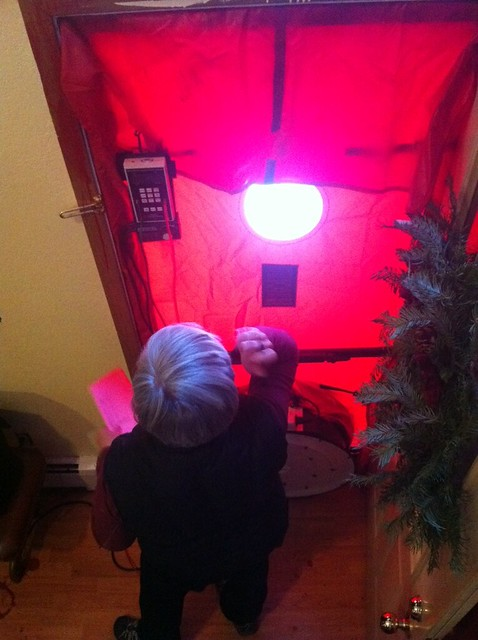 Energy audit turned our house into the ET house.