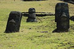 Easter Island 复活岛(2)