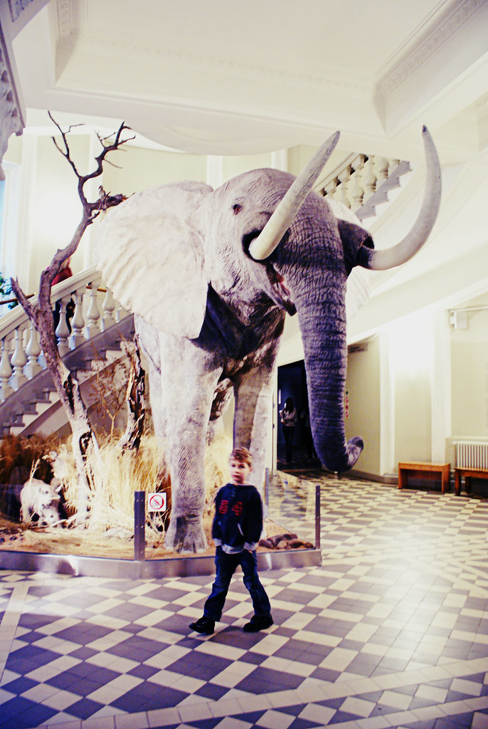 museot 003