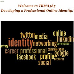 Working on my online professional #identity course - made this #wordle for #moodle site #fun