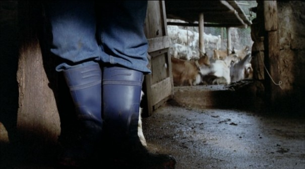 le quattro volte, frammartino, sheep, table, goat, boots, pen, barn, tag