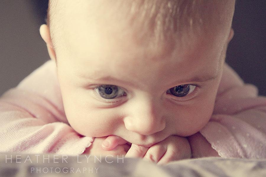 HeatherLynchPhotographyEL2