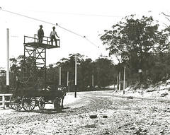 Tramways Tower Wagon mounted on horse drawn wagon - New South Head Rd, Double Bay