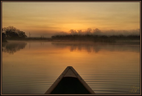 park sun lake reflection nature water fog sunrise golden pond texas bayou pasadena bayareapark armandbayou wanam3