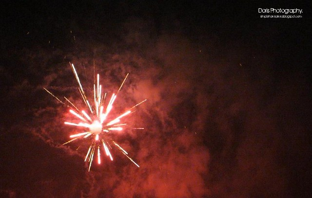 firework 19