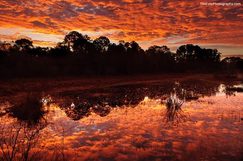 sunrise florida clearwater lakechautauqua project365