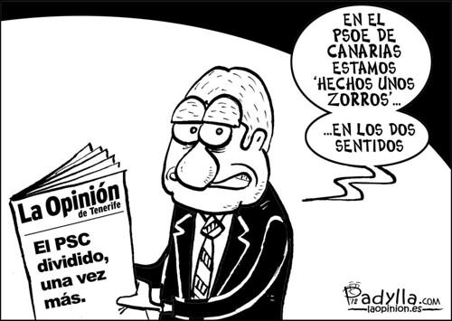 Padylla_2012_01_22_Unos zorros