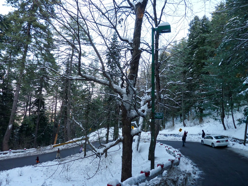 trip to murree