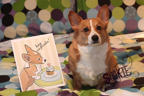 Sookie and her Corgi and Cupcake print by Make Way For Cupcakes