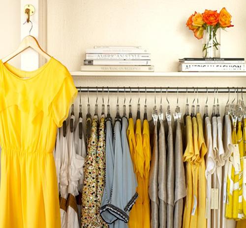 yellowfever1.jpg