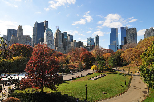 Autumn in the Central Park