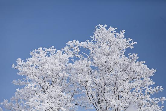 sneeuw 1-3