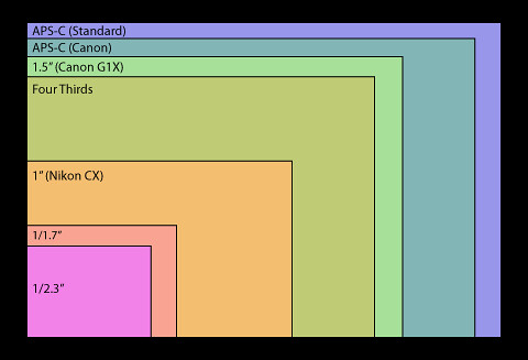 Sensorsizes_G1 X