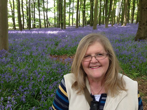 Bluebell Wood, Coton Manor