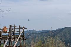 白地平・・・リモコングライダーを飛ばしていた