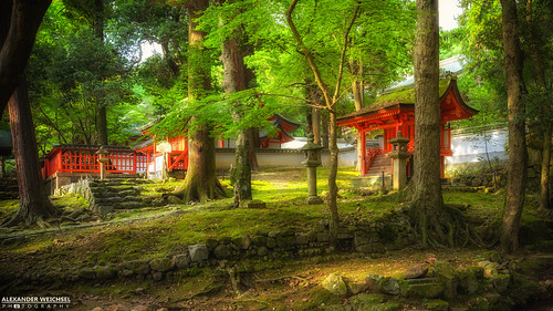 2015 ancient buddhism best culture d610 green honshu japan japon japanese nature nihon nikon nippon red shintoism shinto summer tradition travel travelling view world 日本 本州 일본