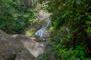 Waima Forest, Waterfall