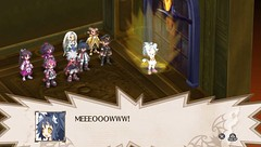Disgaea 3: Absence of Detention 25