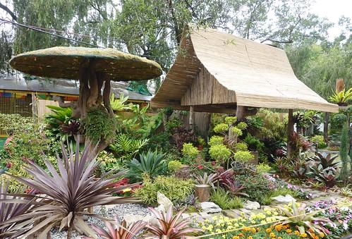 Luzon-Baguio (77)