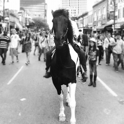 Horse galloping down 6th Street by stevegarfield