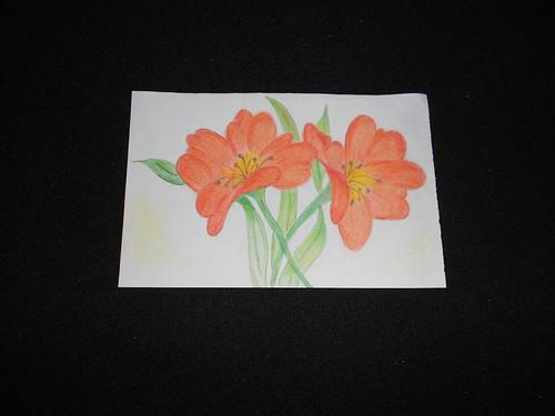 Lillies: jail art