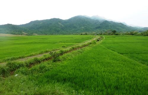 Luzon-Tuguegarao-Santa Ana (123)