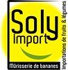 logo Soly