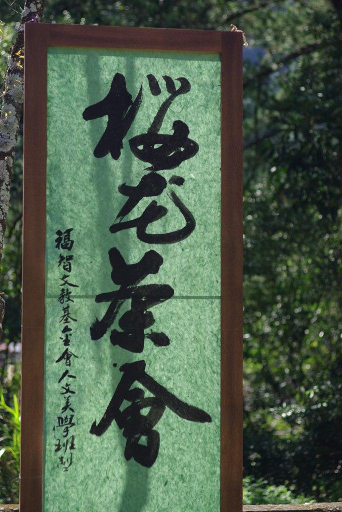 櫻花茶會 by k200D+FA77