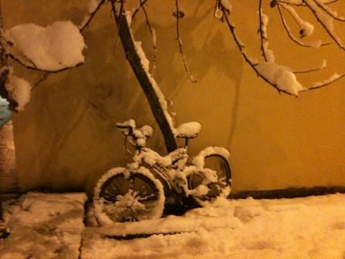 biking ... not yet