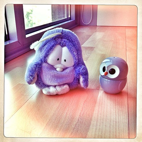 Love of #owl birazdan blogta. Violet ve Cincin'den bir boy foto