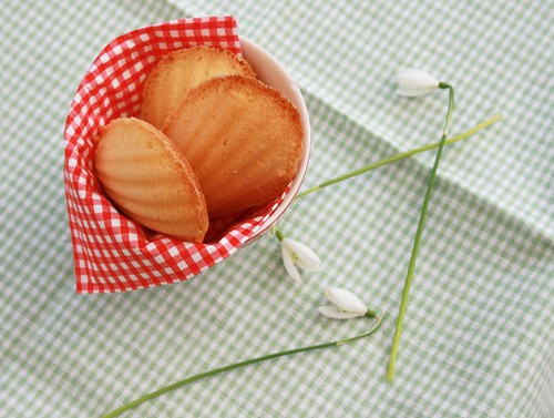 madeleines for spring
