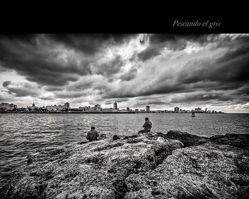 Pescando el gris by Rey Cuba