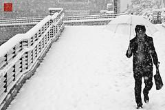 snow again・又雪