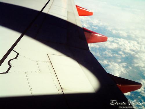 119: Winging it