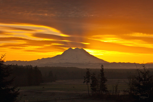 sun mountains nature silhouette sunrise canon landscape rainier washingtonstate t1i matthewreichel