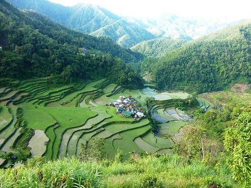 Luzon-Bangaan (152)