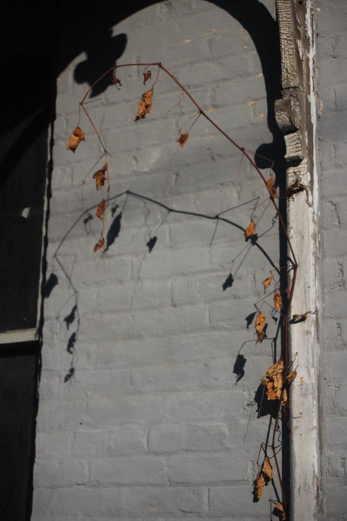 Castleton_porch