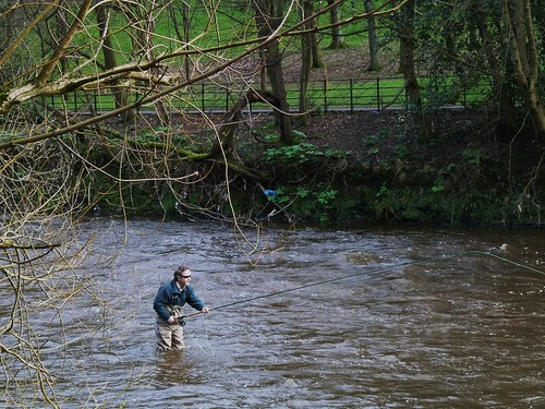 Fly Fishing, River Kelvin
