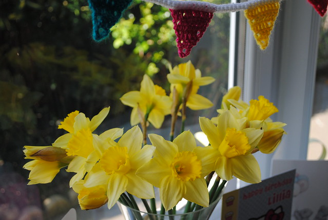 Bunting and Daffodils