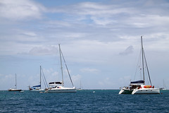 yacht racing, sailboat, sailing, sailboat racing, vehicle, sailing, ship, sea, mast, wind, watercraft, catamaran, boat,