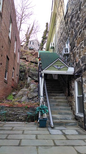 Covered Steps, Patio, and Rock Garden