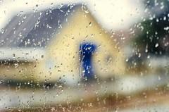 Rain (Abstract)
