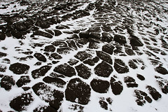21564-Lava-rocks-&-snow-at-Cape-Royds