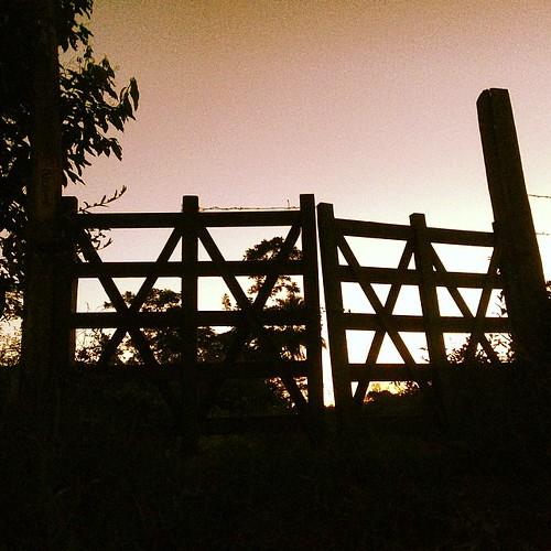 #boanoite com o #pordosol com uma #porteira de #fazenda em #una #bahia #intrabartolo #fotograforibeiraopreto