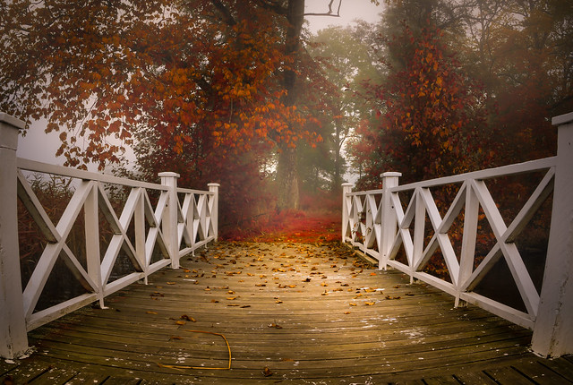 A quiet autumn morning when the fog lifts
