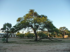 Chaco, Paraguay
